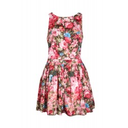 Rio Low Waist Floral Skater Dress