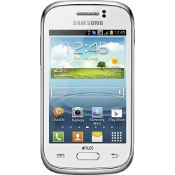 Samsung - Galaxy Young Cell Phone (Unlocked)